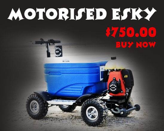 Motorised Esky $750.00